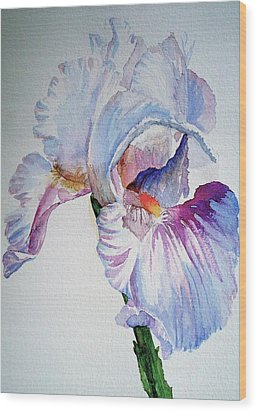 Iris In The Garden Wood Print by Sharon Mick