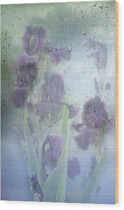 Iris In The Spring Rain Wood Print