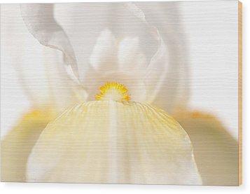 Iris Wood Print by Jerri Moon Cantone