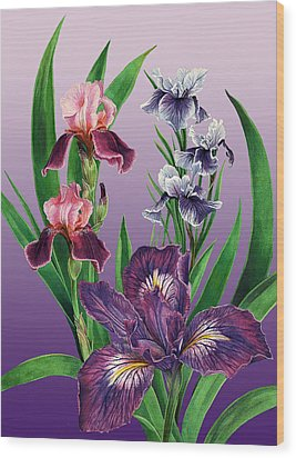 Iris On Purple Wood Print