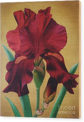Iris Wood Print by Paula Ludovino