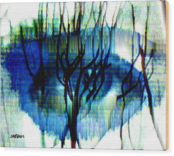Iris Wood Print by Seth Weaver