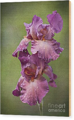 Wood Print featuring the photograph Iris With Raindrops by Cheryl Davis