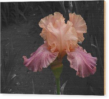 Wood Print featuring the photograph Iris2 by David Pantuso