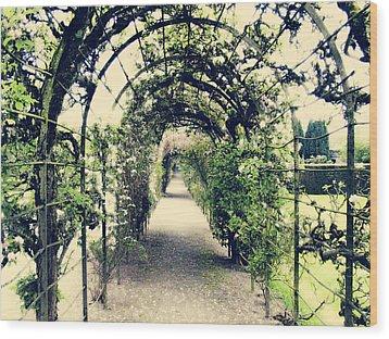Irish Archway Wood Print by Linde Townsend