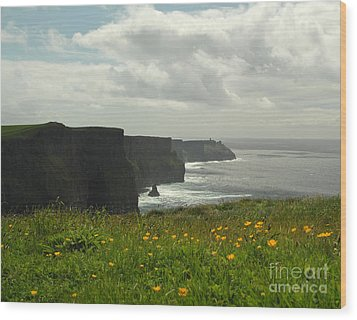 Irish Coast Cliffs Of Moher In Spring Ireland Wood Print by Nature Scapes Fine Art