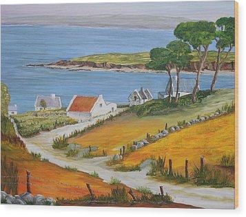 Irish Seaside Village Wood Print by Siobhan Lawson