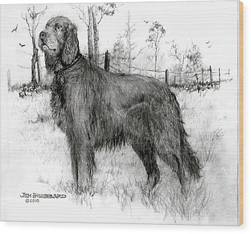 Wood Print featuring the drawing Irish Setter by Jim Hubbard