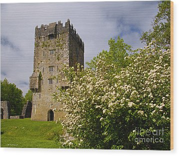 Irish Travel Landscape Aughnanure Castle Ireland Wood Print by Nature Scapes Fine Art