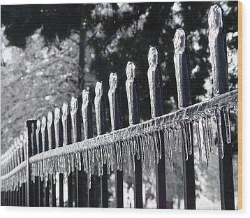 Iron And Ice 1 Wood Print by Elizabeth Sullivan