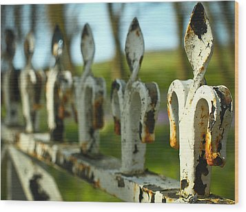 Iron Gate II Wood Print by Jacqui Collett