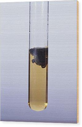 Iron (ii) Hydroxide Precipitate Wood Print by Andrew Lambert Photography