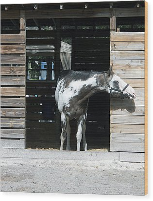 Is It Safe To Come Out Wood Print by Judy Hall-Folde