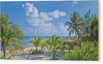 Island Beauty Wood Print by Stephen Anderson