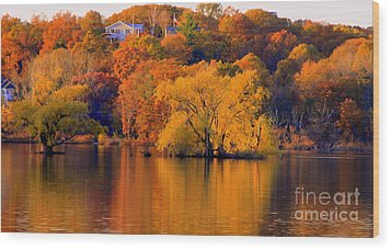 Island  In Fall Wood Print
