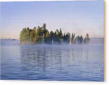 Island In Lake With Morning Fog Wood Print by Elena Elisseeva