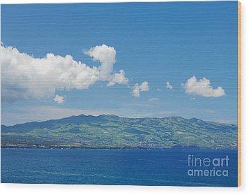 Island On The Horizon Wood Print by Gaspar Avila