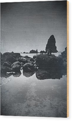 It Seems So Shallow And Low Wood Print by Laurie Search