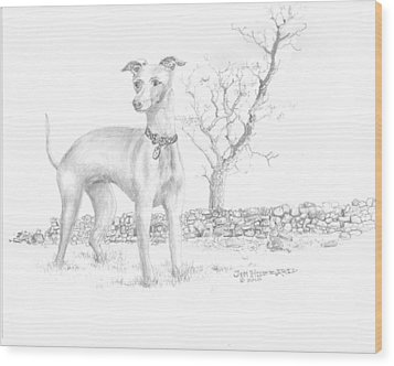 Wood Print featuring the drawing Italian Greyhound by Jim Hubbard