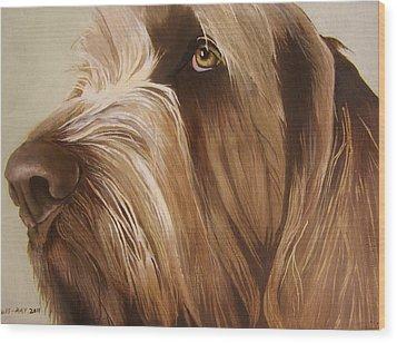 Italian Spinone Wood Print