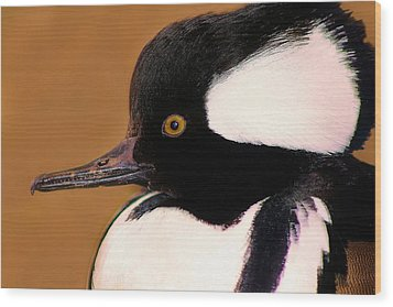 It's A Duck's Life Wood Print by Paulette Thomas