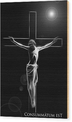 Its Accomplished Wood Print by Steve K
