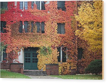 Ivy League Wood Print by Penny Hunt