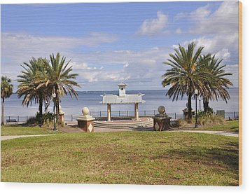 Wood Print featuring the photograph Jacksonville Park View by Sarah McKoy