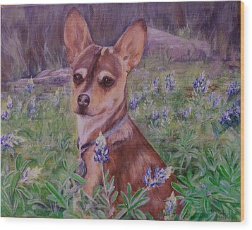 Jacob  In Bluebonnets Wood Print