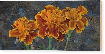 Janet's Marigolds Wood Print by Lisa Moore