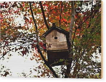 Japanese Garden In Autumn 5 Wood Print by Dean Harte