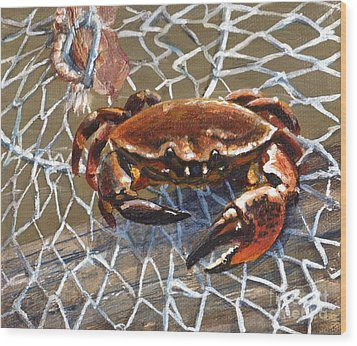 Jekyll Stone Crab Wood Print by Pat Burns