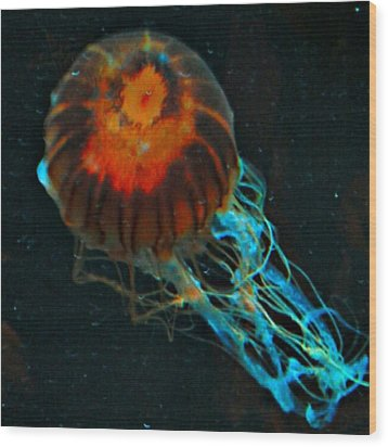 #jellyfish #instadroid #andrography Wood Print by Kel Hill