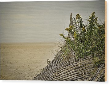 Jersey Shore Wood Print by Heather Applegate