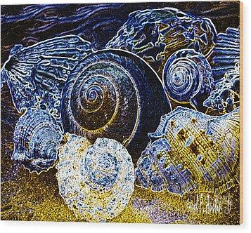Abstract Seashell Art Wood Print