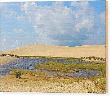 Jockey's Ridge Wood Print by Eve Spring