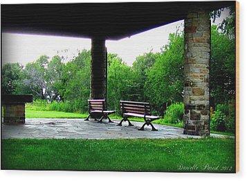 Wood Print featuring the photograph Jollycut Park by Danielle  Parent