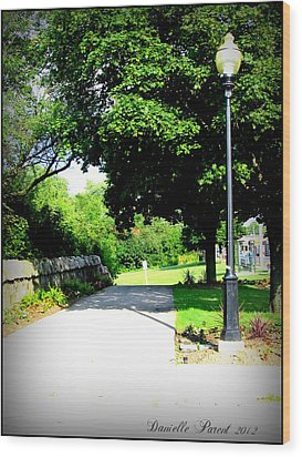 Wood Print featuring the photograph Jollycut Park Walk by Danielle  Parent