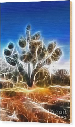 Joshua Tree Wood Print by Methune Hively