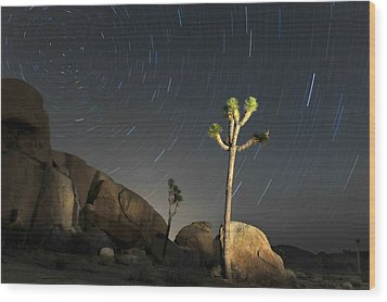 Joshua Tree Star Trails Wood Print by Dung Ma