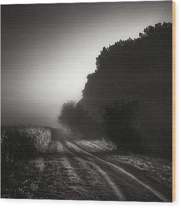 Journey Into The Unknown - Cesta Do Neznama Wood Print by Jaromir Hron