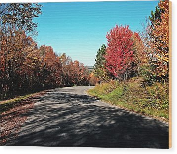 Wood Print featuring the photograph Joy Ride by Christian Mattison