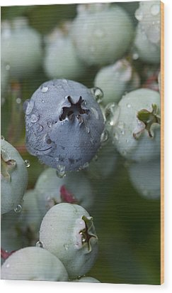 Wood Print featuring the photograph Just Blue by Carrie Cranwill