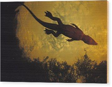 Just Days-old, A Nile Crocodile Makes Wood Print by Michael Nichols