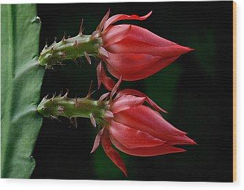 Just Flower Vii Wood Print