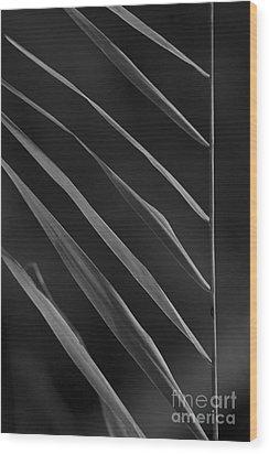 Just Grass Bw Wood Print by Heiko Koehrer-Wagner