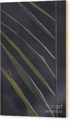 Just Grass Wood Print by Heiko Koehrer-Wagner