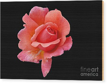 Wood Print featuring the photograph Just Peachy by Cindy Manero