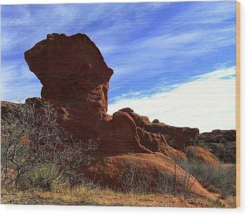 Jut Rock Original Wood Print by Clarice  Lakota