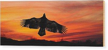 Wood Print featuring the photograph Juvenile Sunset  by Randall Branham